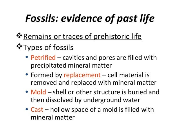Fossils: evidence of past life Remains or traces of prehistoric life Types of fossils • Petrified – cavities and pores a...