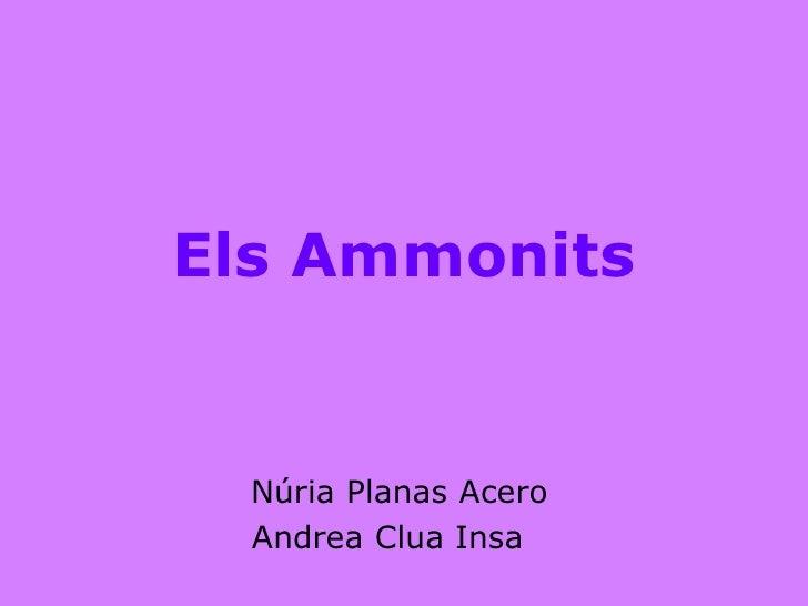 Els Ammonits     Núria Planas Acero   Andrea Clua Insa
