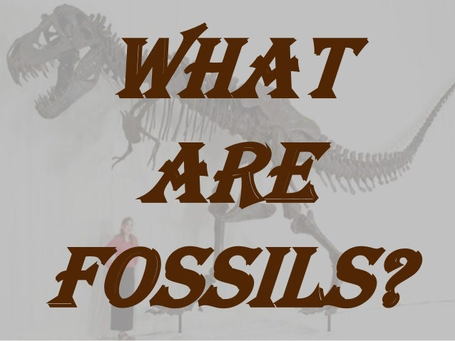 What  arefossils?