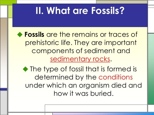 II. What are Fossils?  Fossils are the remains or traces of prehistoric life. They are important components of sediment a...