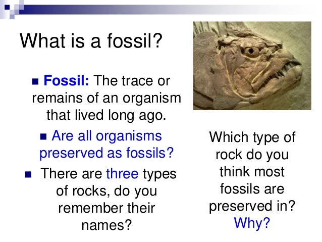 difference between absolute and relative fossil dating