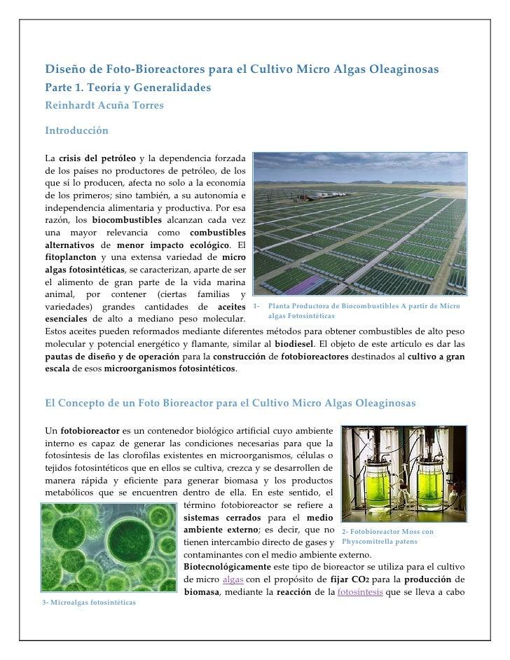 Diseño de Foto-Bioreactores para el Cultivo Micro Algas OleaginosasParte 1. Teoría y GeneralidadesReinhardt Acuña TorresIn...