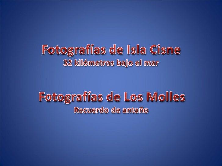 Fotografías de buceo en Isla Cisne y Los Molles - Chile