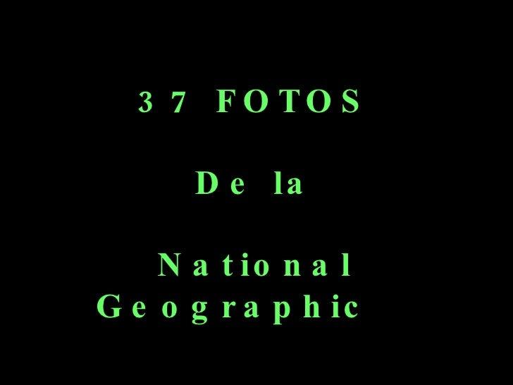 37 FOTOS De la National Geographic