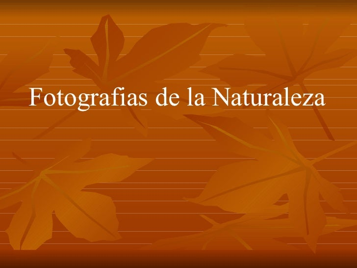 Fotografias de la Naturaleza