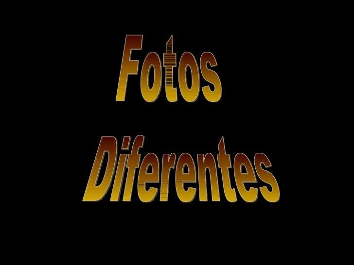 Fotos diferentes e divetidas