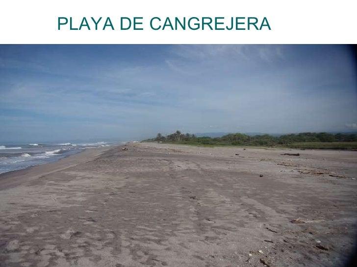 PLAYA DE CANGREJERA