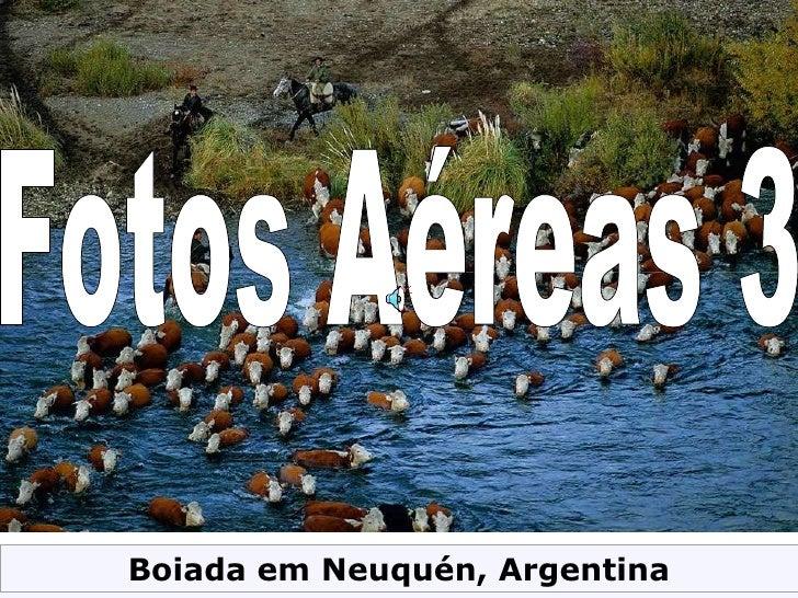 Fotos Aéreas 3 Boiada em Neuquén, Argentina