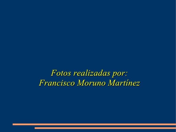 Fotos realizadas por: Francisco Moruno Martínez