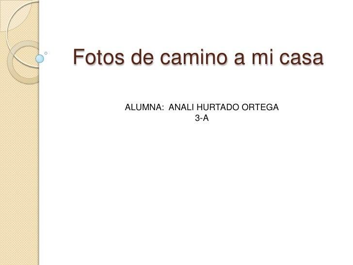 Fotos de camino a mi casa     ALUMNA: ANALI HURTADO ORTEGA                  3-A