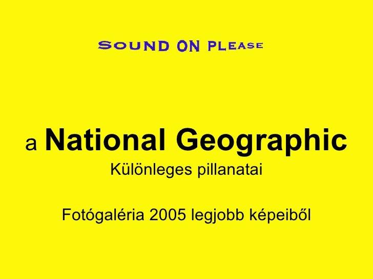 Fotos De National G