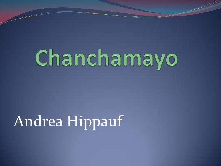 Andrea Hippauf