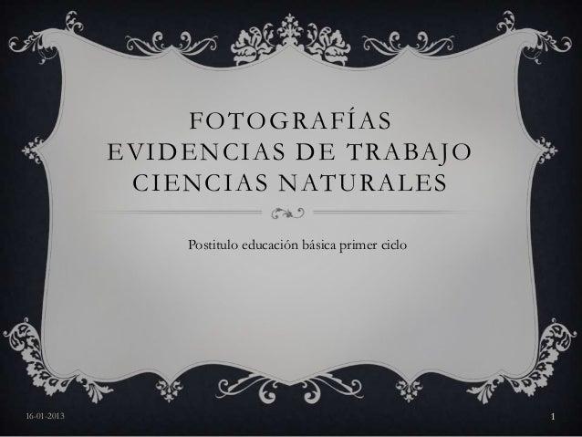 FOTOGRAFÍAS             EVIDENCIAS DE TRABAJO              CIENCIAS NATURALES                 Postitulo educación básica p...