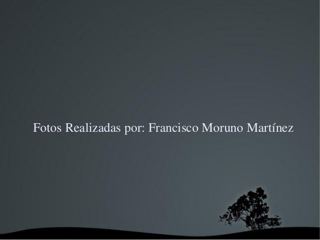 FotosRealizadaspor:FranciscoMorunoMartínez