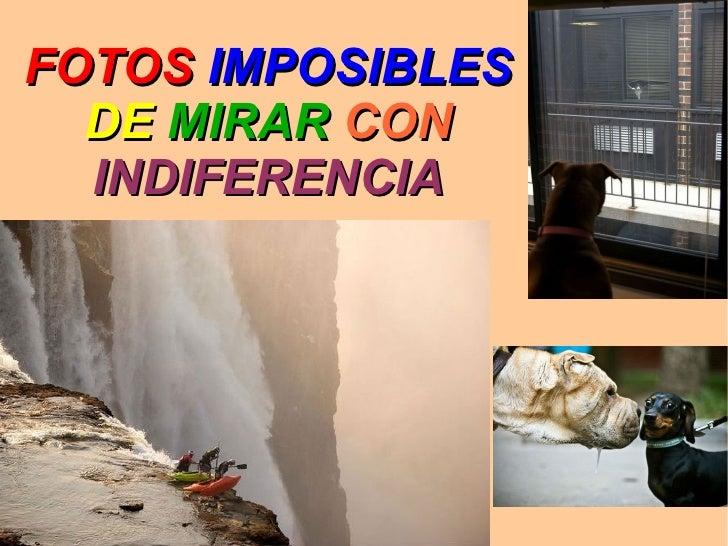 FOTOS IMPOSIBLES  DE MIRAR CON  INDIFERENCIA