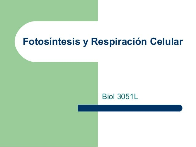 Fotosíntesis y Respiración Celular Biol 3051L