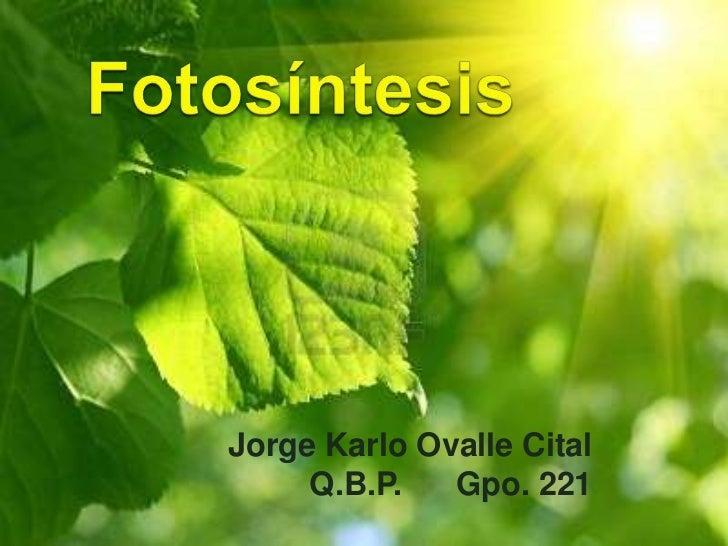 Jorge Karlo Ovalle Cital     Q.B.P.   Gpo. 221