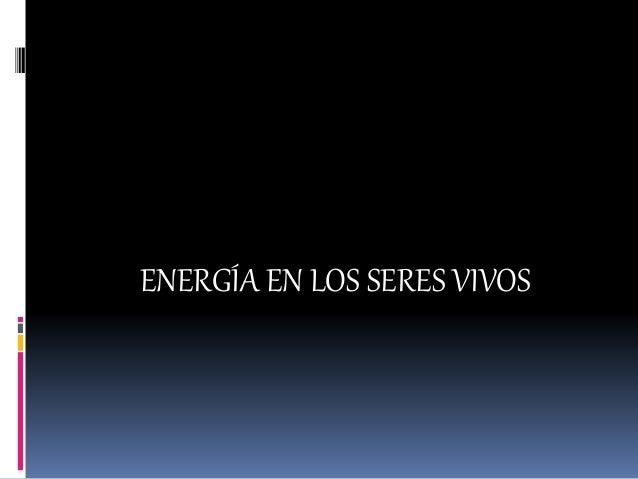 ENERGÍA EN LOS SERES VIVOS