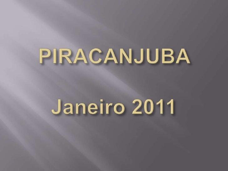 Fotos Piracanjuba