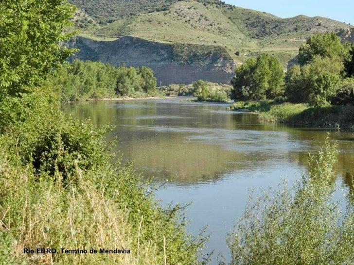 Río EBRO. Término de Mendavia
