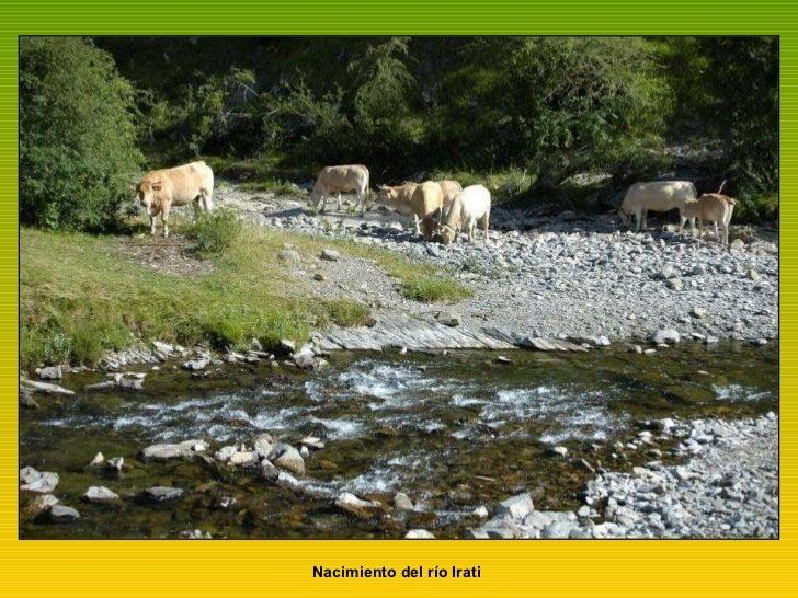 Nacimiento del río Irati