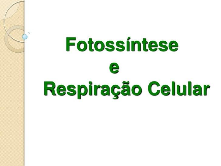 Fotossíntese       eRespiração Celular