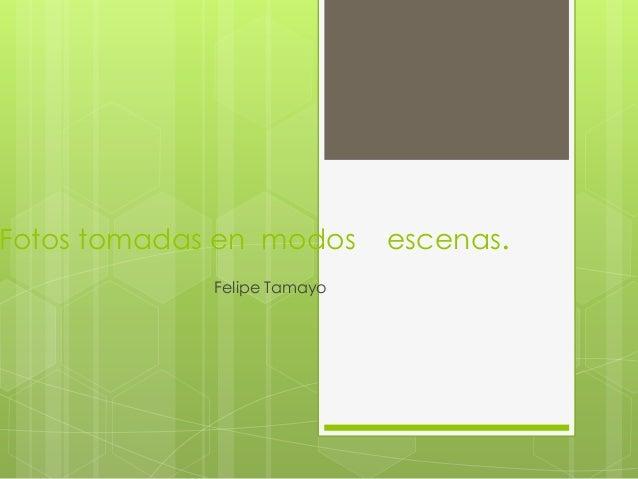 Fotos tomadas en modos escenas. Felipe Tamayo
