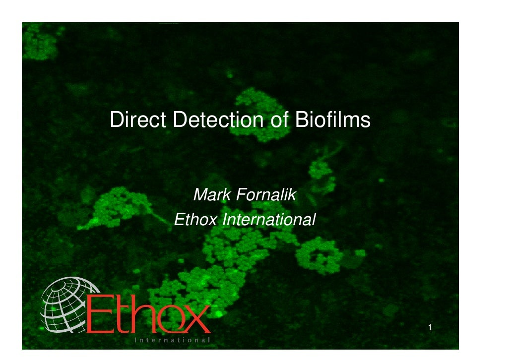 Direct Detection of Biofilms           Mark Fornalik       Ethox International                                    1