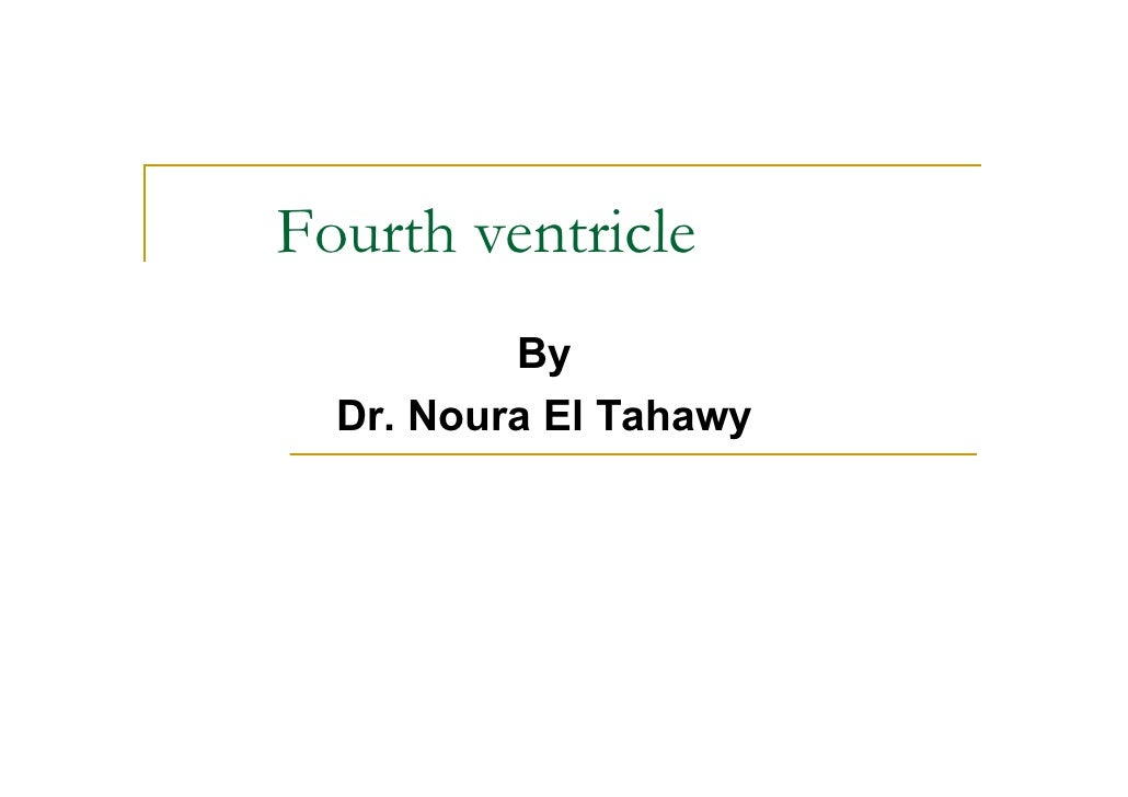 Fourth ventricle           By   Dr. Noura El Tahawy