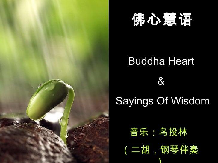 佛心慧语 Buddha Heart  &  Sayings Of Wisdom 音乐:鸟投林  (二胡,钢琴伴奏)