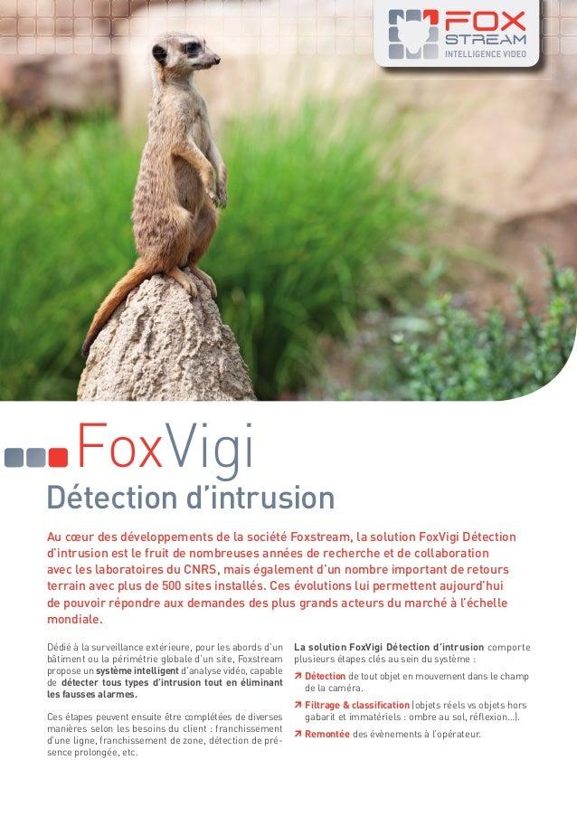 FoxVigi  Détection d'intrusion Au cœur des développements de la société Foxstream, la solution FoxVigi Détection d'intrusi...