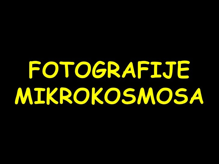 Fotos of microcosmos