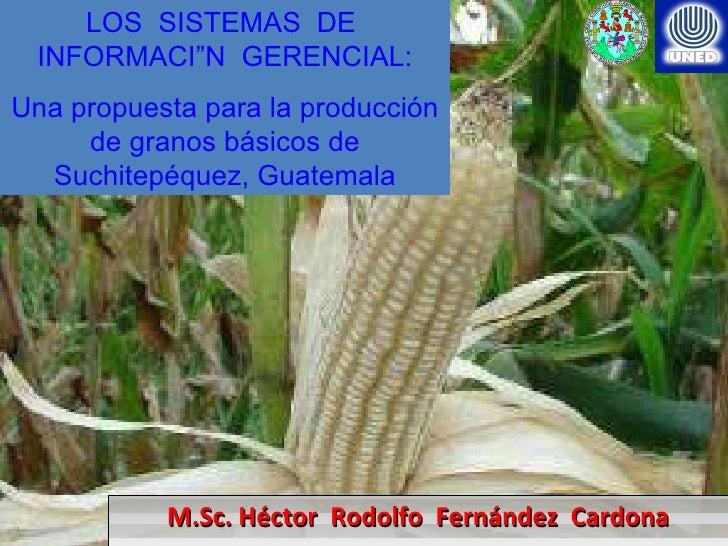 M.Sc. Héctor  Rodolfo  Fernández  Cardona LOS  SISTEMAS  DE  INFORMACIÓN  GERENCIAL: Una propuesta para la producción de g...