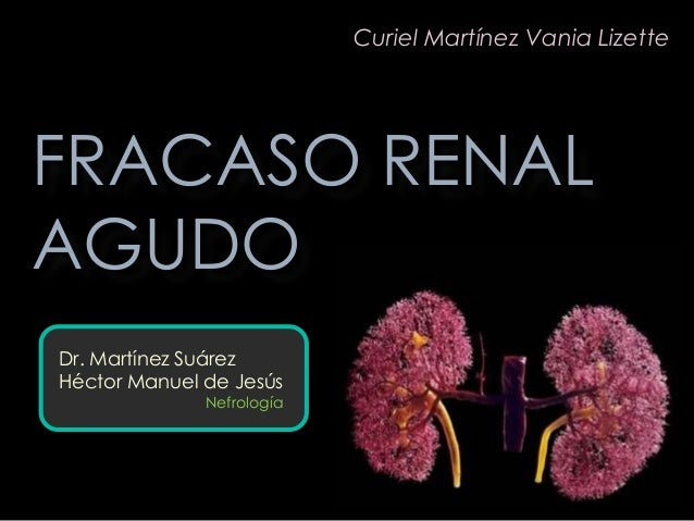 Dr. Martínez Suárez Héctor Manuel de Jesús Nefrología FRACASO RENAL AGUDO Curiel Martínez Vania Lizette