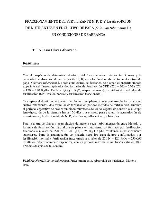 FRACCIONAMIENTO DEL FERTILIZANTE N, P, K Y LA ABSORCIÓN DE NUTRIENTES EN EL CULTIVO DE PAPA (Solanum tuberosum L.) EN COND...