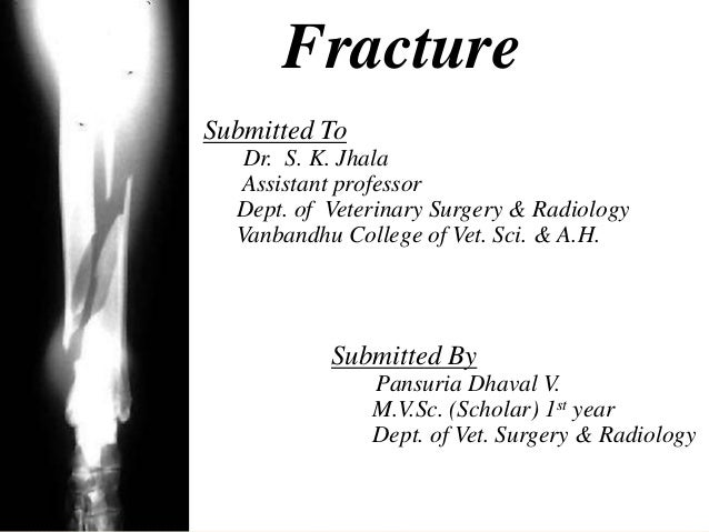 FractureSubmitted To   Dr. S. K. Jhala  Assistant professor  Dept. of Veterinary Surgery & Radiology  Vanbandhu College of...