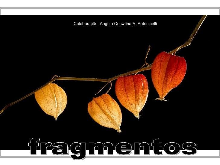 fragmentos Colaboração: Angela Criswtina A. Antonicelli