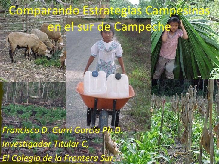 Comparando Estrategias Campesinas en el sur de Campeche Francisco D. Gurri García Ph.D. Investigador Titular C, El Colegio...