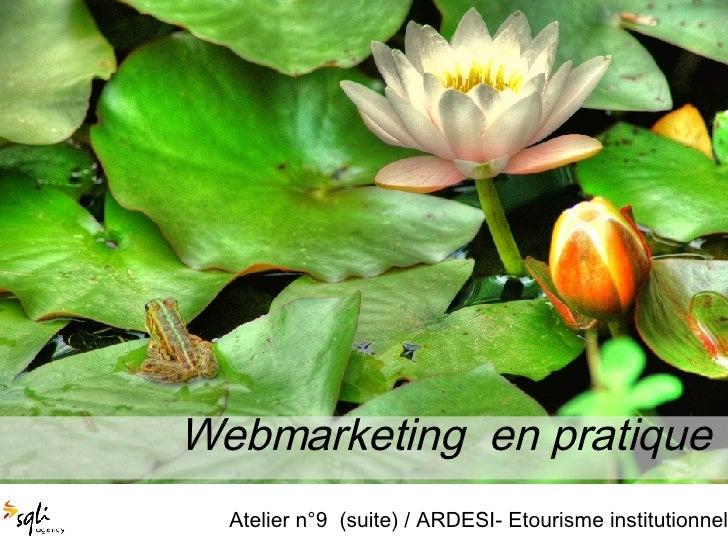 Webmarketing  en pratique  Atelier n°9  (suite) / ARDESI- Etourisme institutionnel