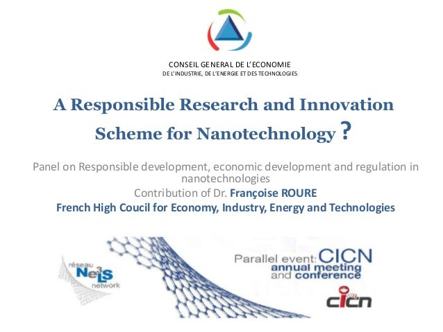 Françoise Roure_A possible research and innovation scheme for Nanotechnology?