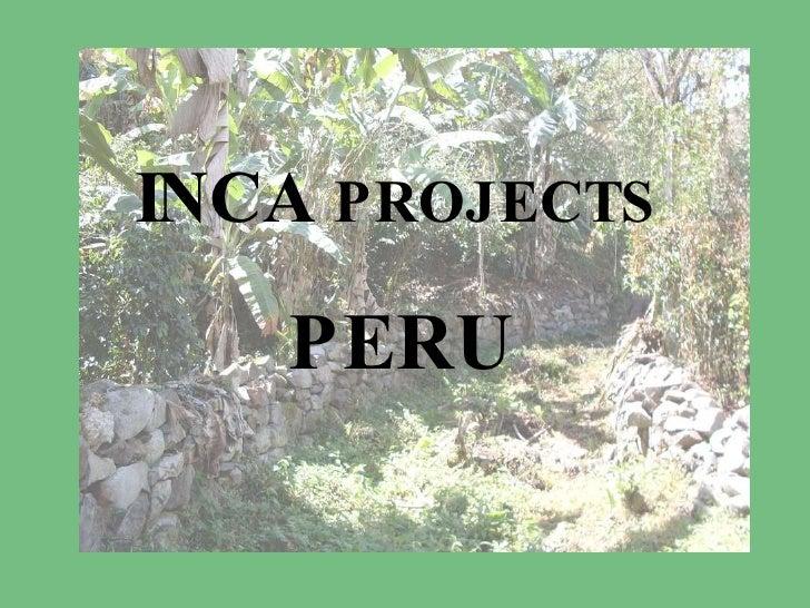 Vrijwilligerswerk in Peru - Inca Project