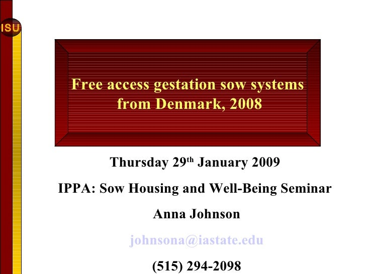 Free Access Gestation Sow Systems From Denmark August Of 2008 Part 1 Anna Johnson Iowa State University