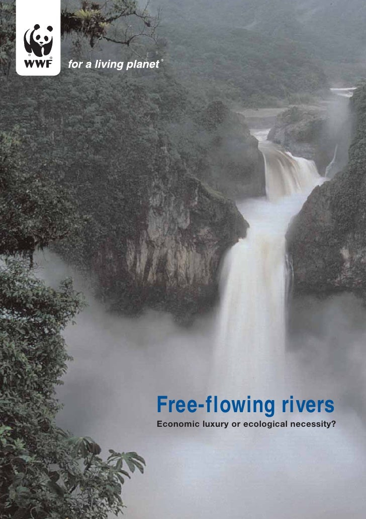 Free-flowing riversEconomic luxury or ecological necessity?