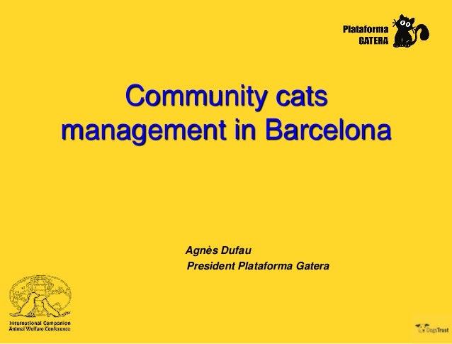Community cats management in Barcelona  Agnès Dufau President Plataforma Gatera