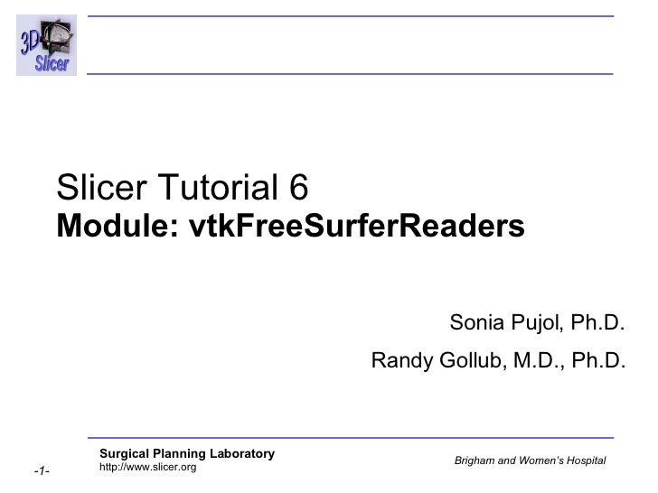 Slicer Tutorial 6  Module: vtkFreeSurferReaders  Sonia Pujol, Ph.D. Randy Gollub, M.D., Ph.D.