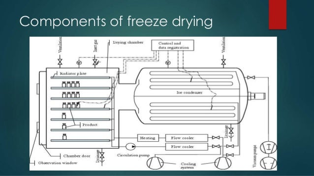 Freeze Drying Equipment Ppt Ray Freeze Dryer Freeze