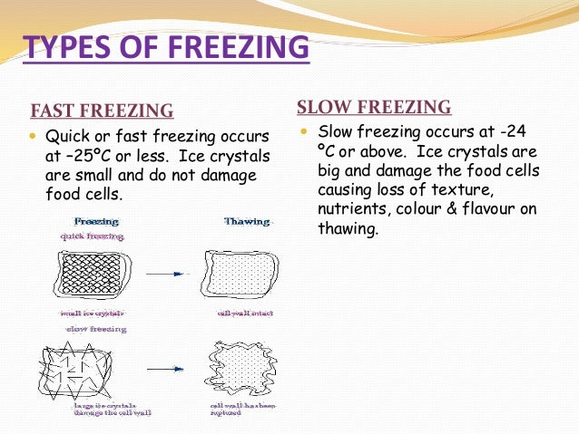 effects of cryogenic freezing essay Letterpile» personal essays cryonics is the process that, immediately after being declared dead, the body is frozen in an effort to preserve it, keeping all the organs and cell structures loss of memory, coordination, and personality are all consequences of only losing a small fraction of your brain cells.