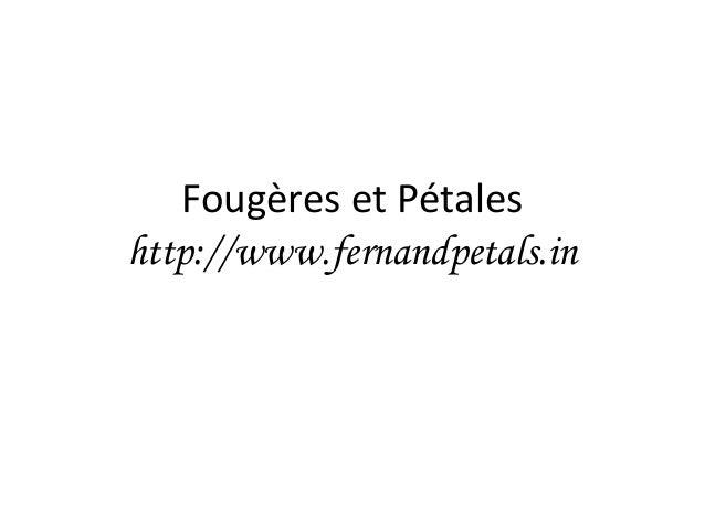 Fougères et Pétales http://www.fernandpetals.in