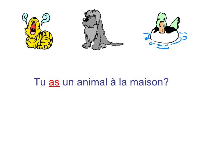 French animal a la maison all for As tu un animal a la maison