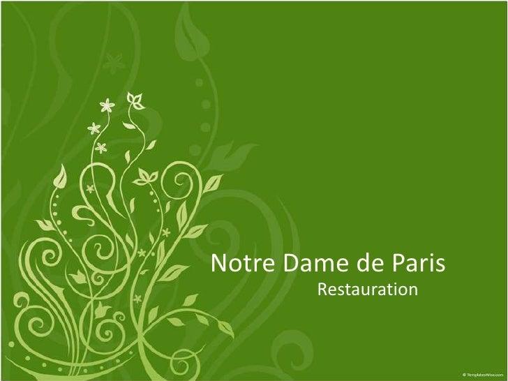 Notre Dame de Paris<br />Restauration<br />